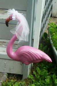 Flamingo bride. (Photo by Laurel Hammmig)