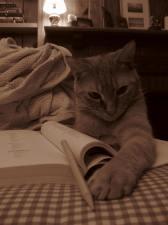 Meet Fuzzy. He likes to study.