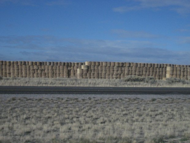 Hay on the side of I-15 in Idaho. It was everywhere, Annie said.