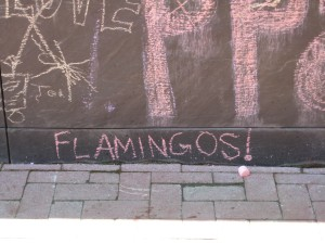 Flamingos! on the chalkboard.