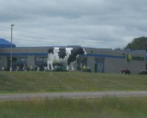A giant cow in Minnesota, on the outskirts of St. Paul.
