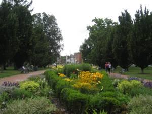 In Schiller Park.
