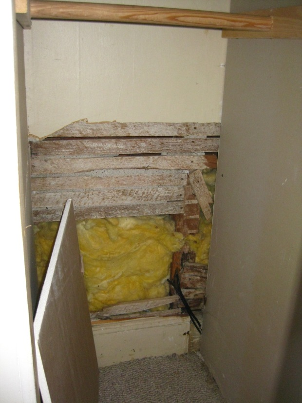 Plaster and lath in the closet, covered by gypsum board and now filled with insulation.