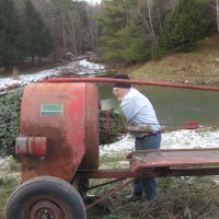 Baling the Christmas Tree