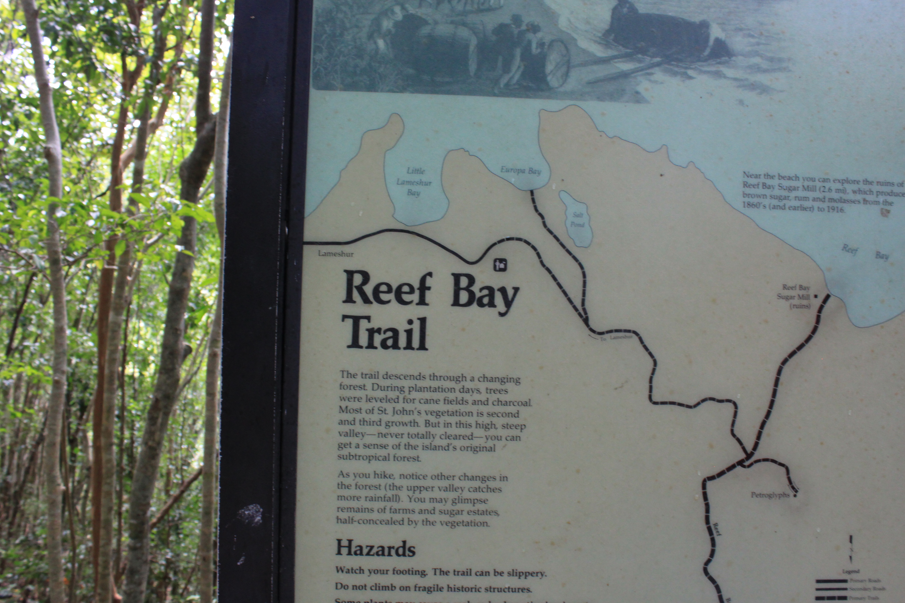 Historic Sites on the Reef Bay Trail  Preservation in Pink