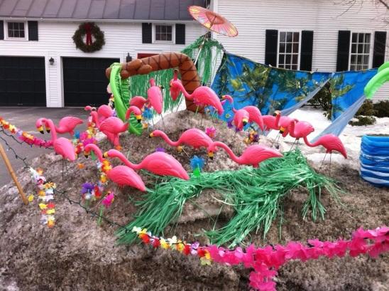flamingospring.jpg