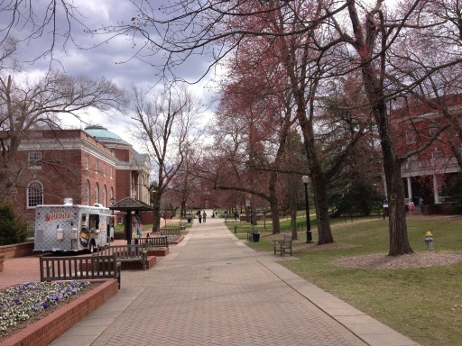 Strolling down campus walk at Mary Washington.