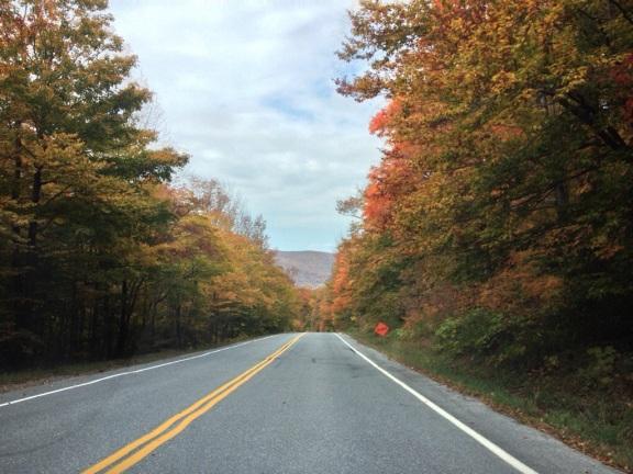 VT Route 17.