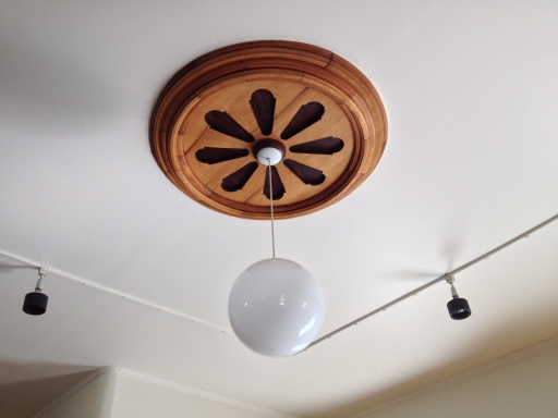 A beautiful medallion and historic light fixture that make a statement.
