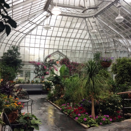 The view inside the conservatory.