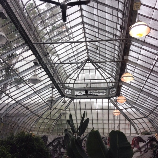 Looking up at the ceiling on a rainy day. Imagine the warm sunshine beaming through those panes!