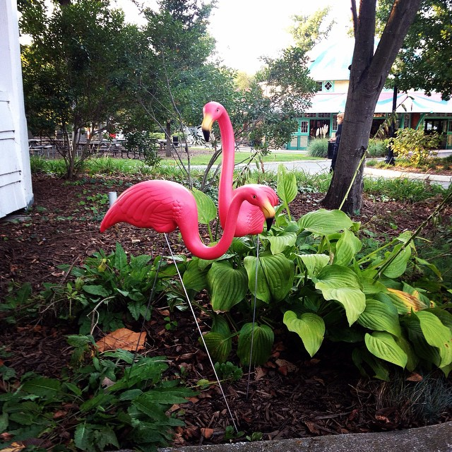 Pink Flamingo Wedding Cake Toppers